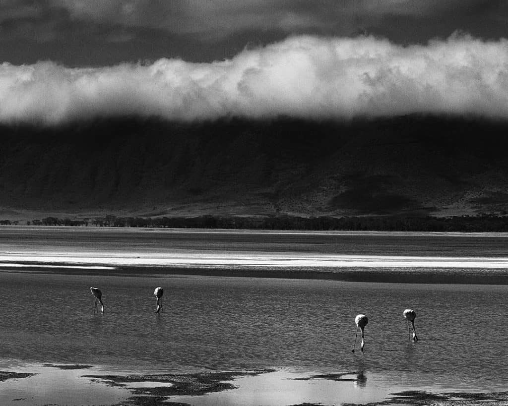 Ngorongoro crater, Tanzania. 2002