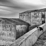 Zen master, Revelim Fort, Sines, Portugal. 2020